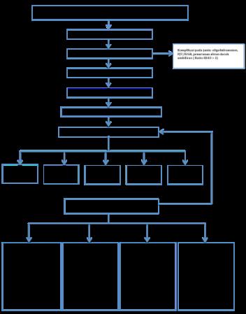 Gambar 3. Kerangka Teori